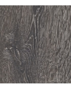 Magnitude Chêne Ardèche 088