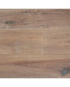 Concept Trendy Frêne gris